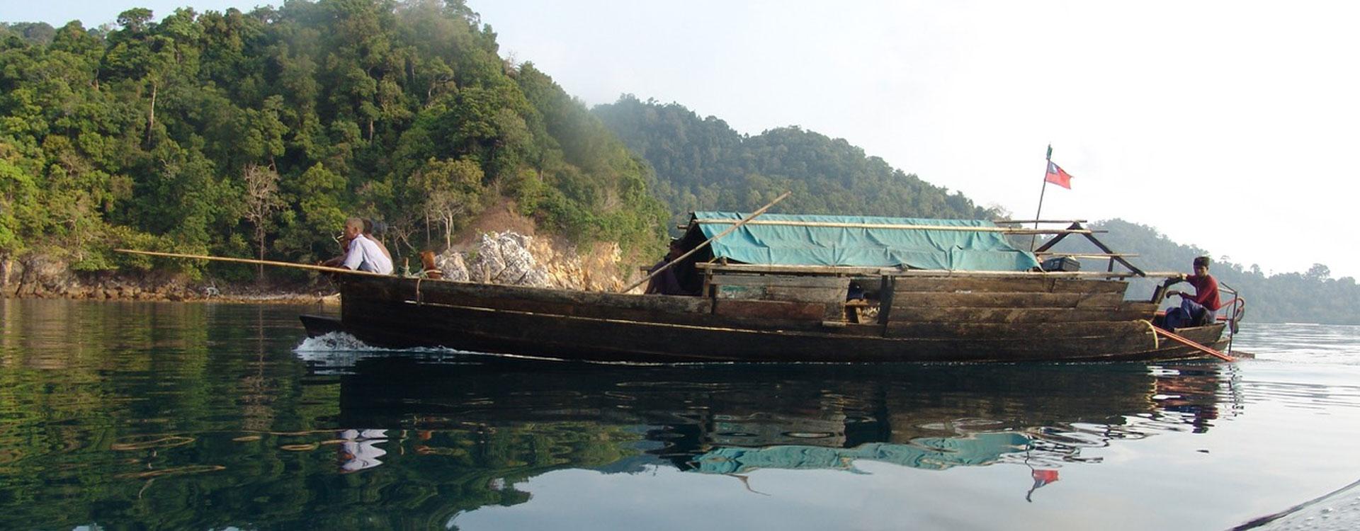 Organic boats